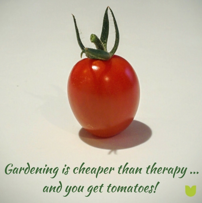 Gardening is cheaper than therapy ... and you get tomatoes!.jpg