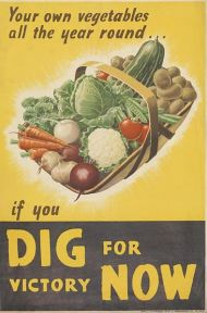 Your_Own_Vegetables_All_the_Year_Round_-_If_You_Dig_For_Victory_Now_Art.IWMPST17009